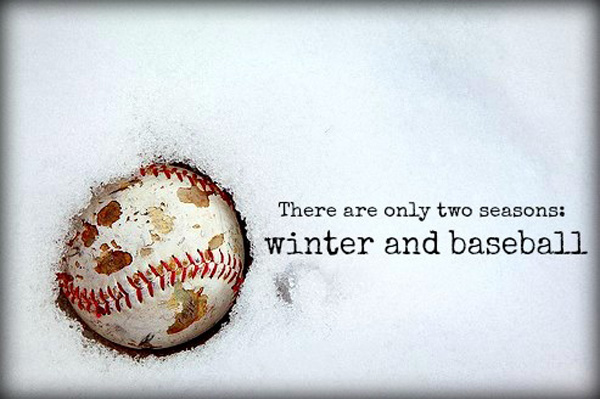 offseason baseball