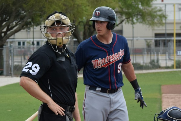 Mitch Garver (I have no idea what he and the umpire were looking at, but I'm sure it was interesting)