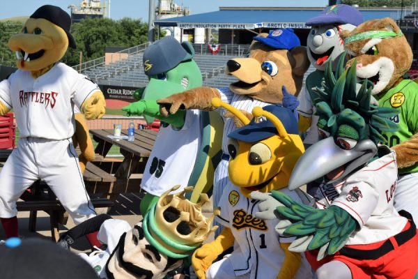 "More than half of the Midwest League's team mascots made the trip to Cedar Rapids. My daughter commented afterwards, ""It was like Mr Shucks had a party and got to invite all his friends."""